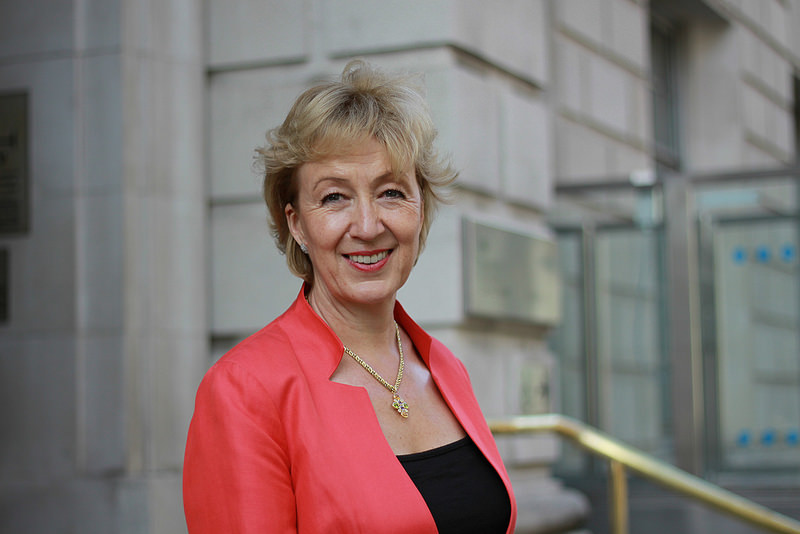 media-training-lessons-pink-elephant-communications-andrea-leadsom