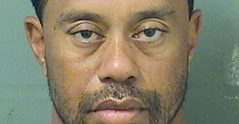 mug-shot-tiger-woods-body language-pink-elephant-communications