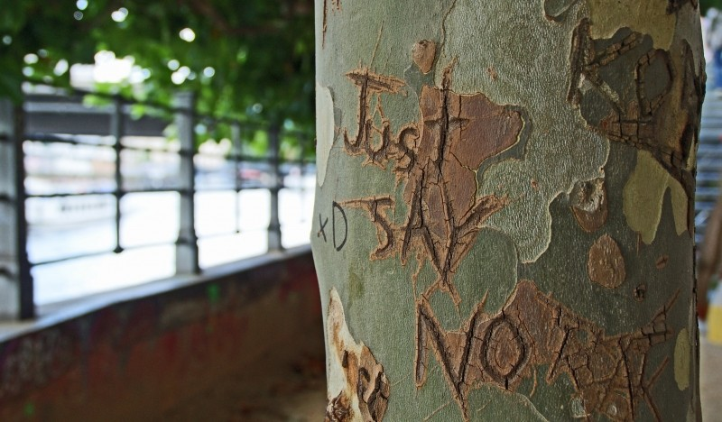 just say no tree media training glasgow.