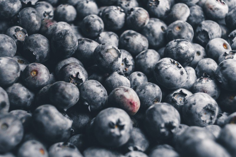 blueberries, how to win over your audience, educate