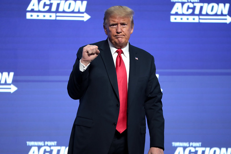 us election 2020, pink elephant communications, trump win