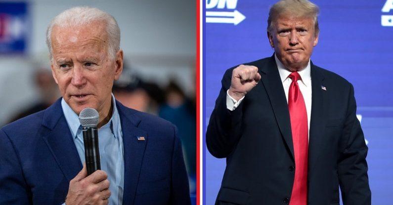 US election 2020, biden, trump, pink elephant communications